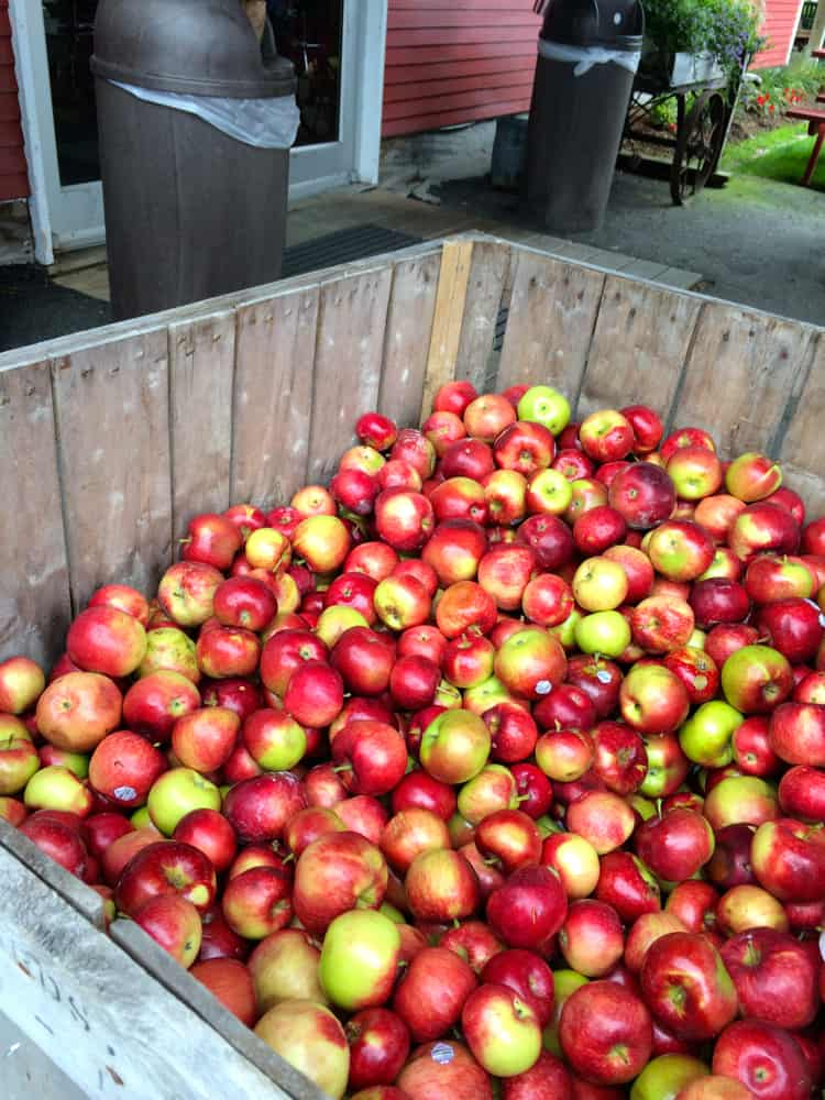 Cold Hollow Apples | The Foodie Dietitian @karalydon
