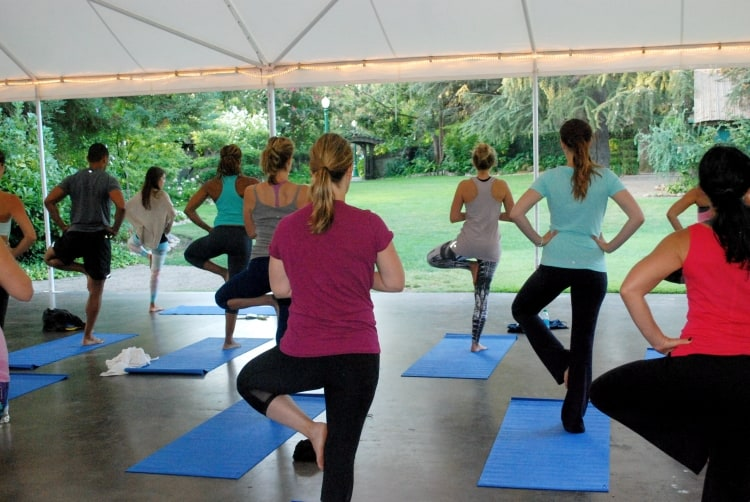 Nutrition & Yoga Corporate Packages