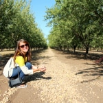 California Almond Orchard Tour