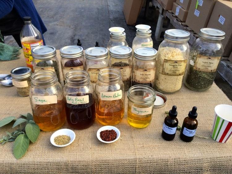 herbs for winter wellness 2