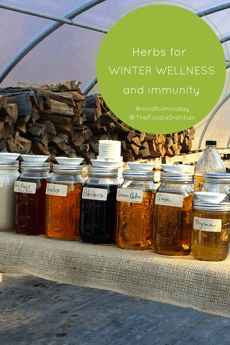 herbs for winter wellness-pin