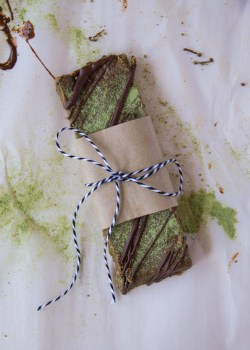 Dark Chocolate Matcha Hemp Protein Bars