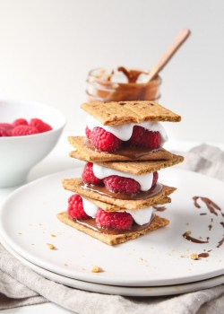 Vegan Raspberry Nutella S'mores
