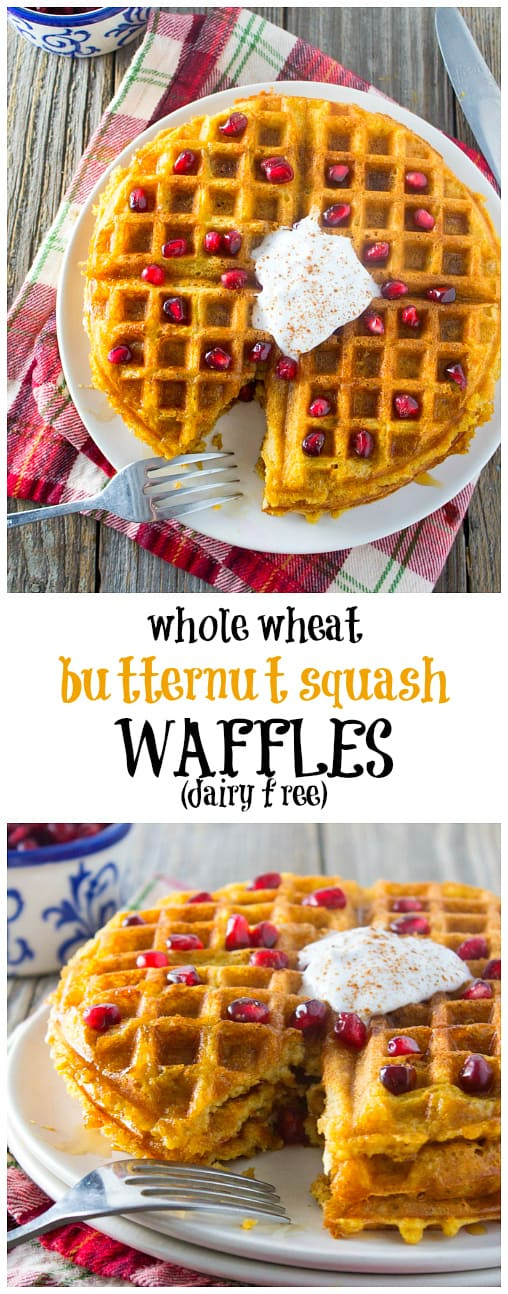 A festive and healthy holiday breakfast or brunch item! These dairy free whole wheat butternut squash waffles are made with whole grains and no refined sugars. Light, fluffy, and deliciously sweet, your family and guests will go nuts for this.