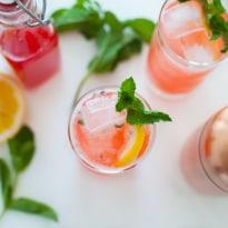 Strawberry Rhubarb Gin Fizz-4-2