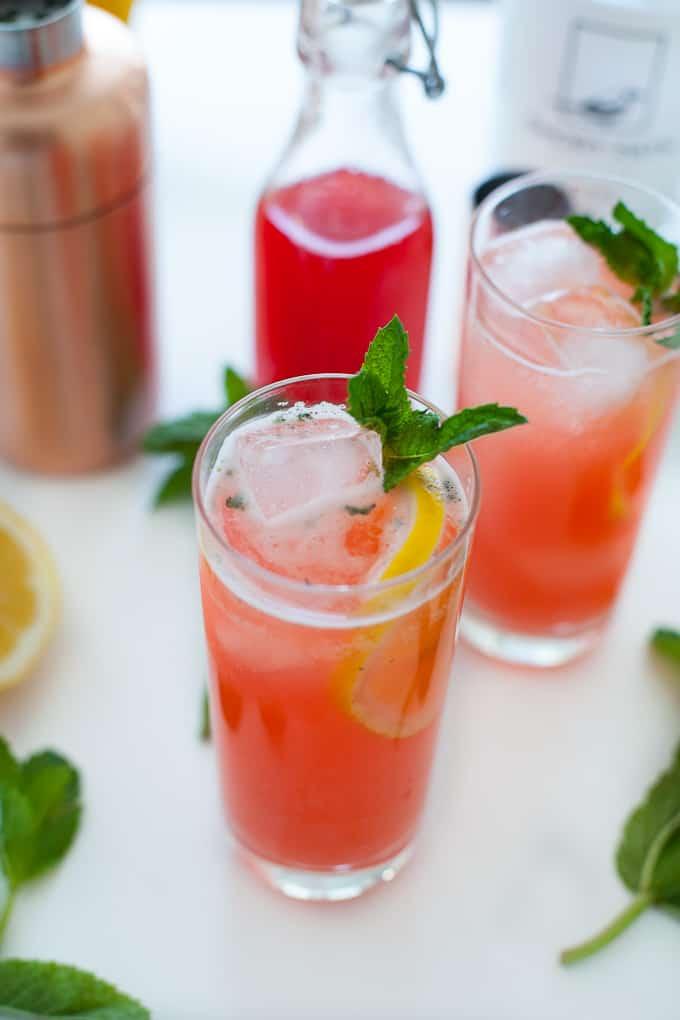 Strawberry Rhubarb Gin Fizz-6-2