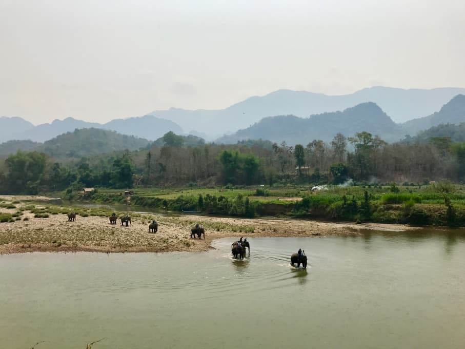 5 Days in Luang Prabang - Elephant Village