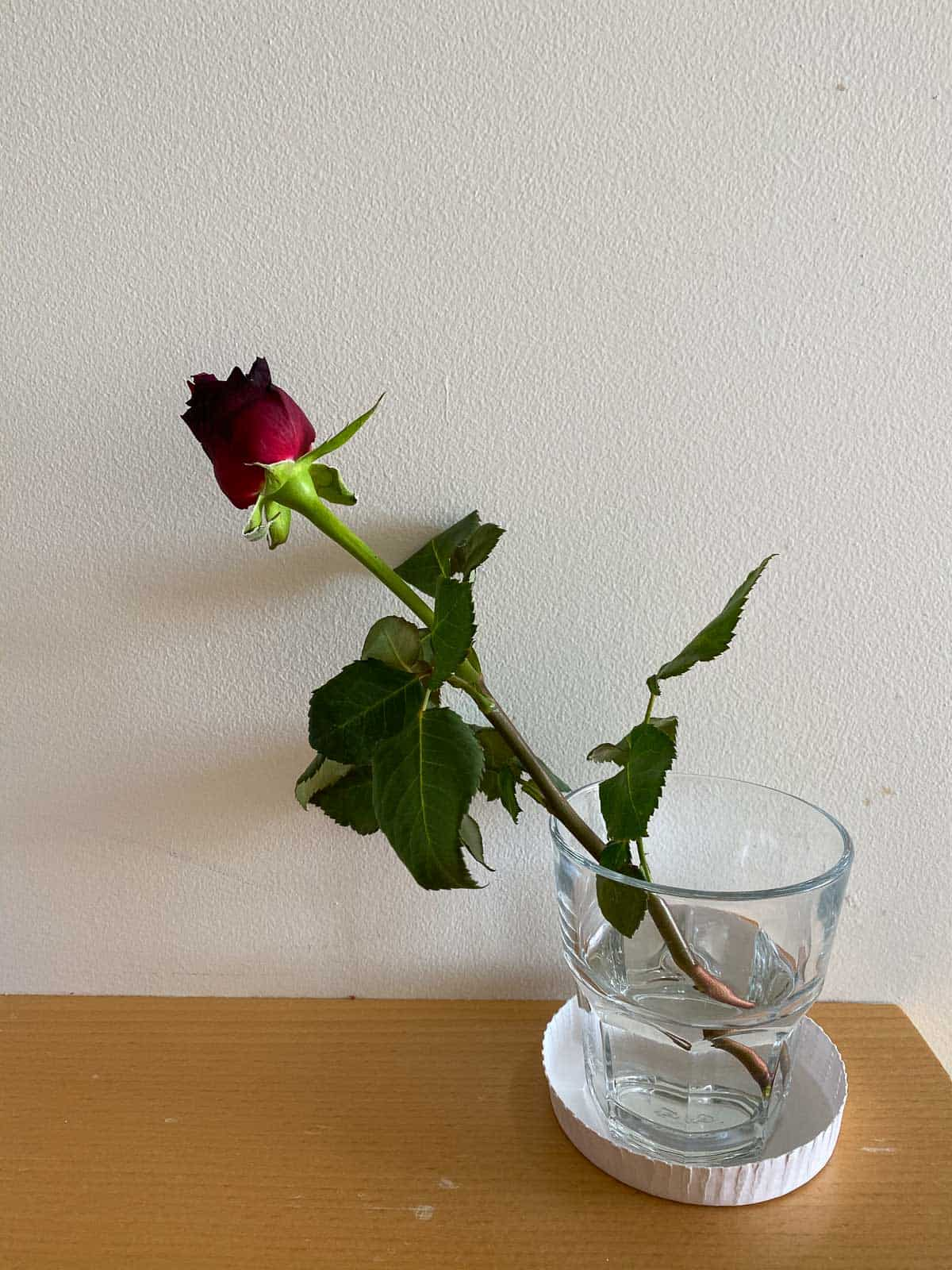 a single rose in a small glass vase