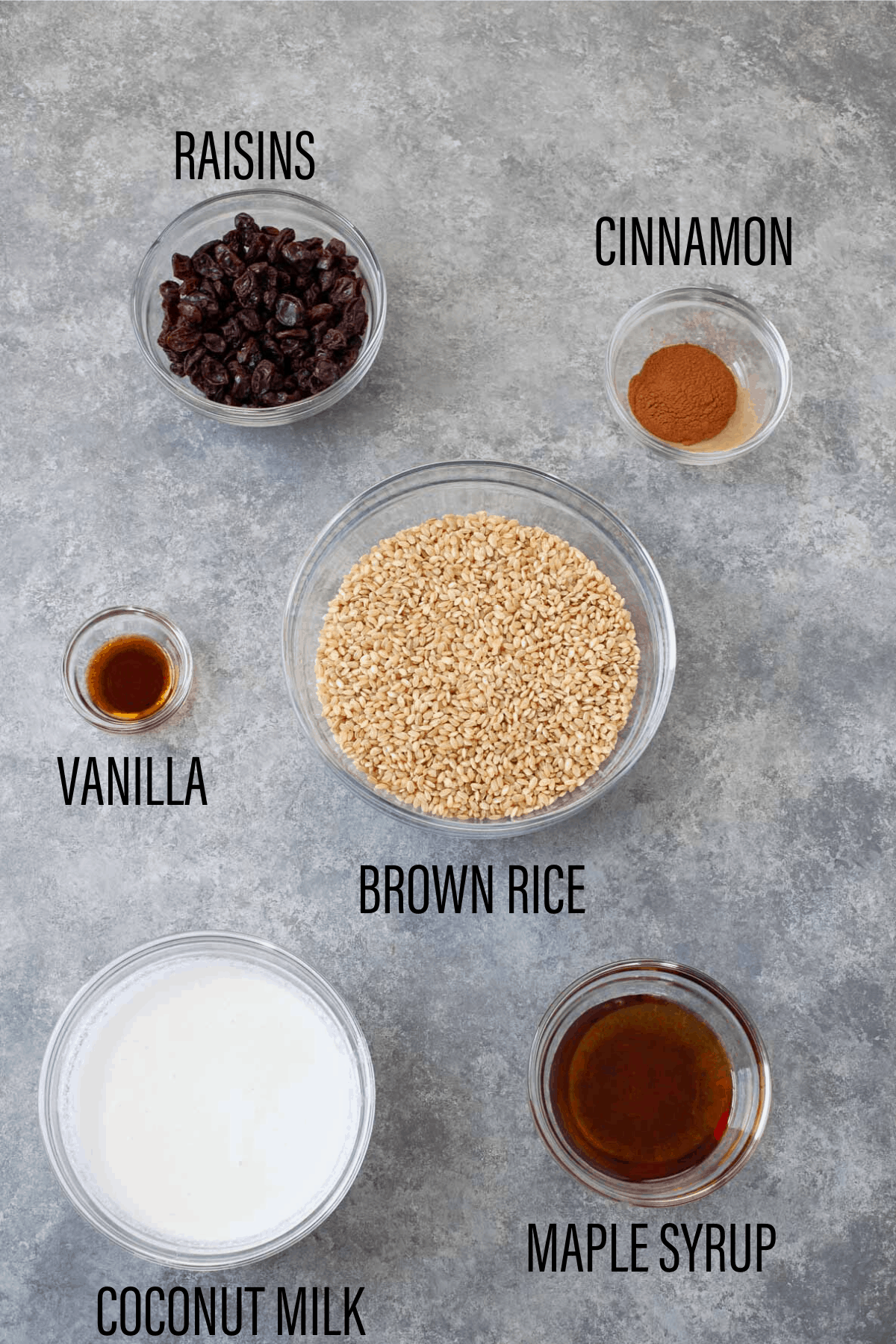 raisins, cinnamon, vanilla, brown rice, coconut milk, and maple syrup separated in various bowls