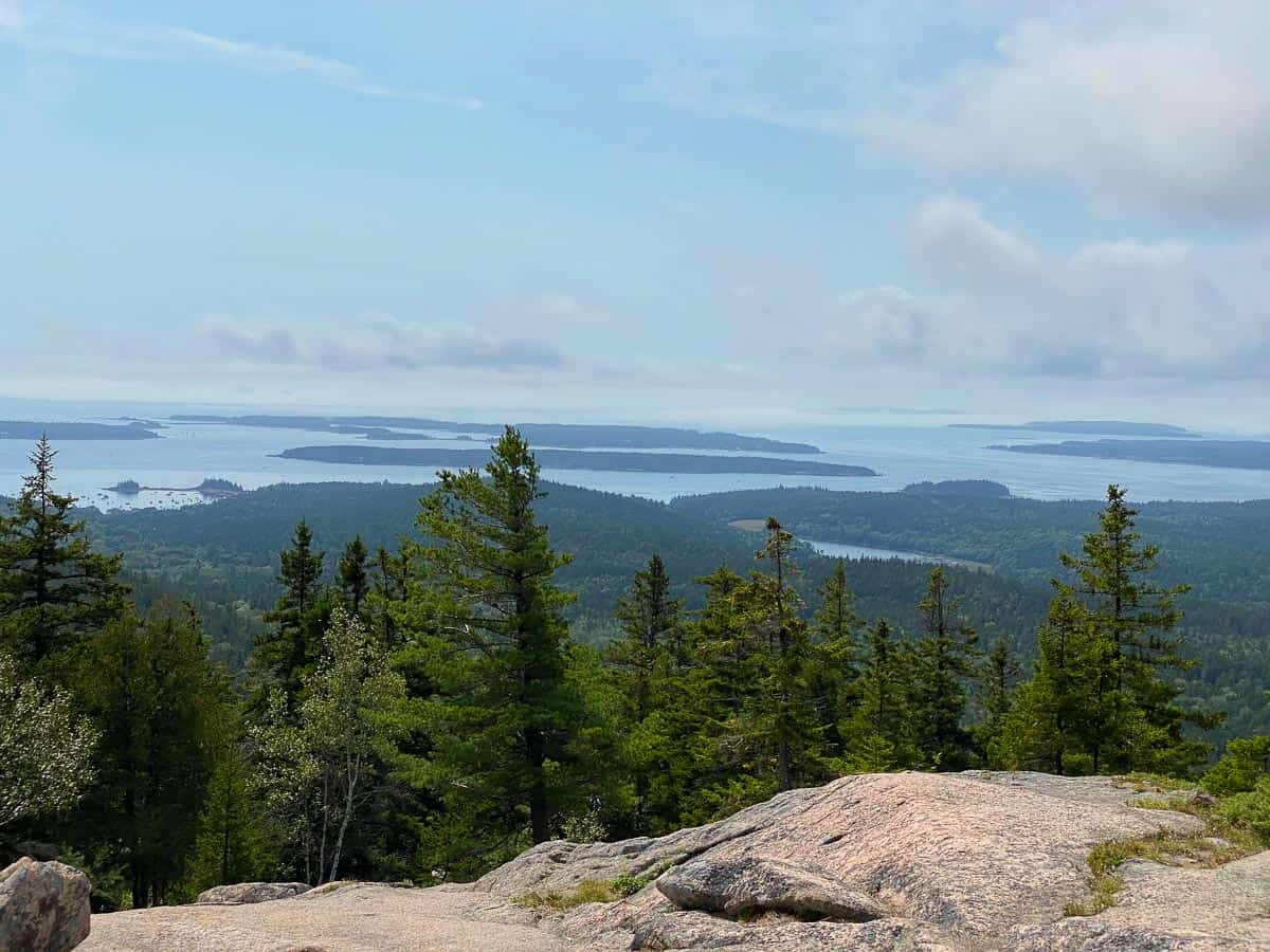 views of the trees and water from Pemetic Mountain